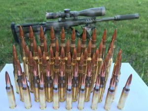 Choosing a rifle cartridge.