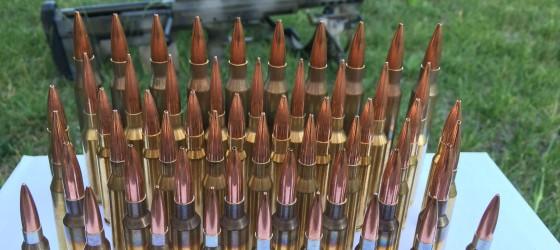 Choosing a Rifle Cartridge