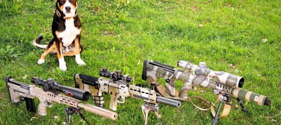 More Guns? Or Multi-Caliber Guns?