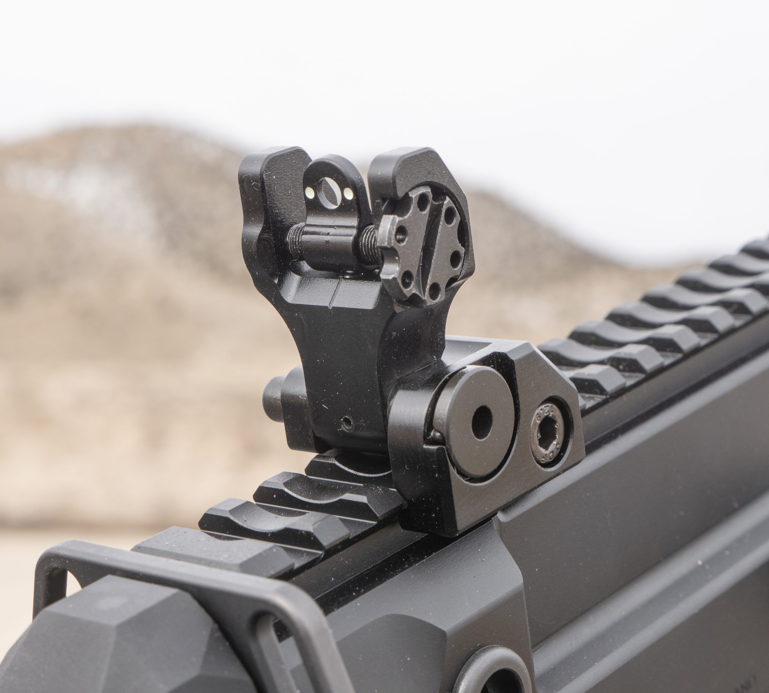 Iron Sights, they aren't just for backup
